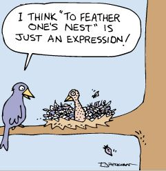 Cartoon-Birds-Nesting